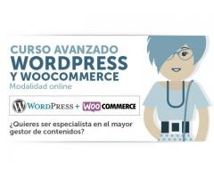 Curso WooCommerce en Palermo Capital Federal