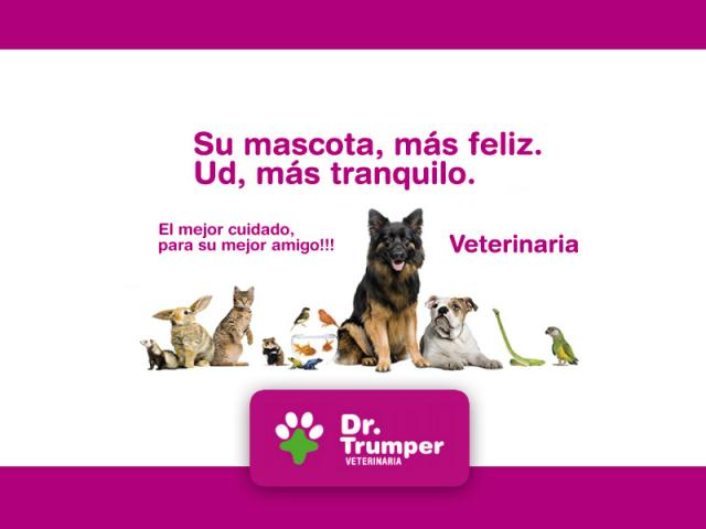 Veterinaria Capital Federal