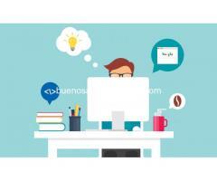 Profesor de diseño web