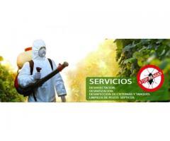 Fumigaciones San Isidro Urgencias 11 6432-7599