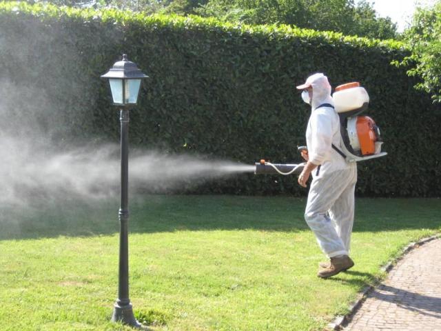 Fumigaciones Canning Control de plagas 11 64327599