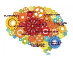 Taller de estimulación cognitiva en Adultos.